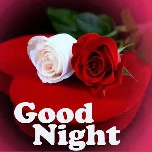 good night image with rose and love labzada wallpaper